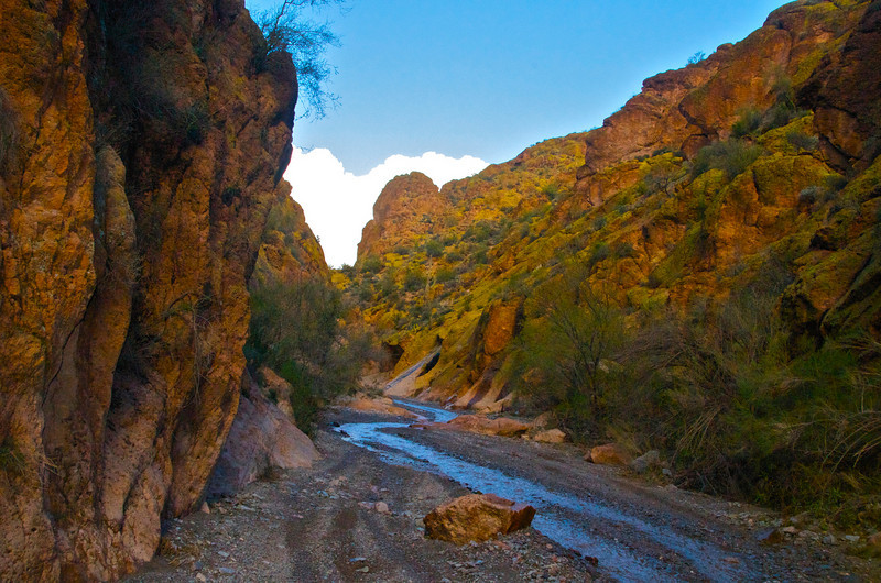 Box Canyon. AZ Stream.jpg