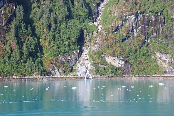 Glacier Cruising- June 23