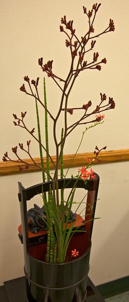 ARBORETUM/FLOWER SHOW 04-19-09