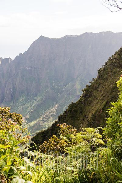 Kauai2017-055.jpg