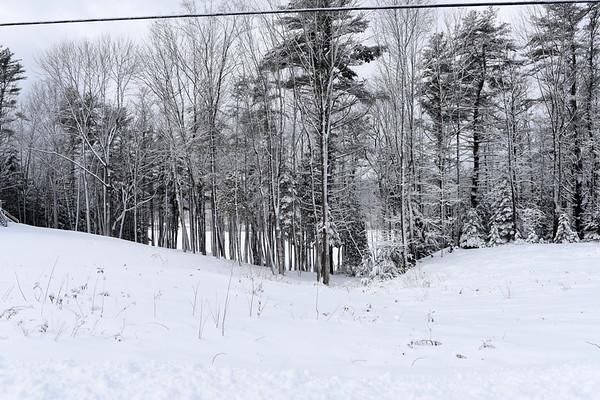 Winter wonderland Feb. 2017