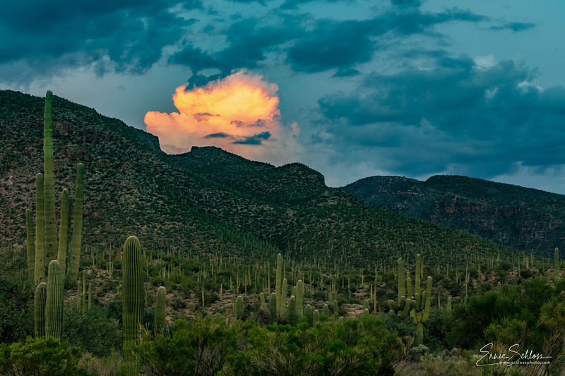 Sabino Sunset 9-1-2018a-.jpg