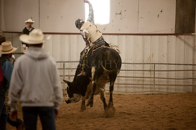 20131102 Rodeo