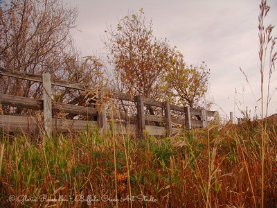 Fence on the Hill