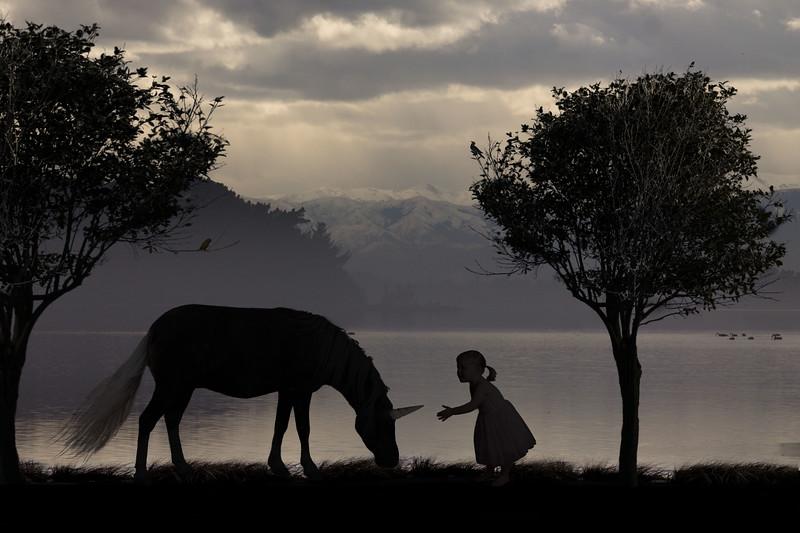 Unicorn Silhoutte2.jpg