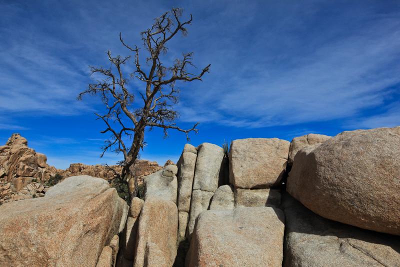 Hidden Valley - Joshua Tree National Park