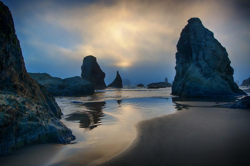 The Coast