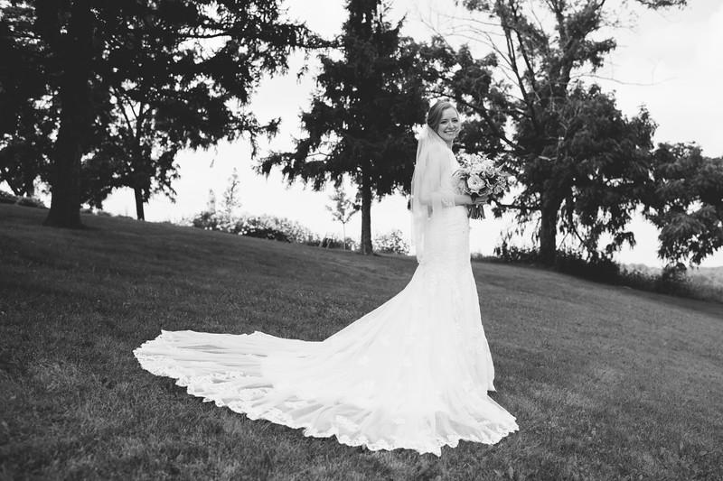2018-megan-steffan-wedding-356-2.jpg