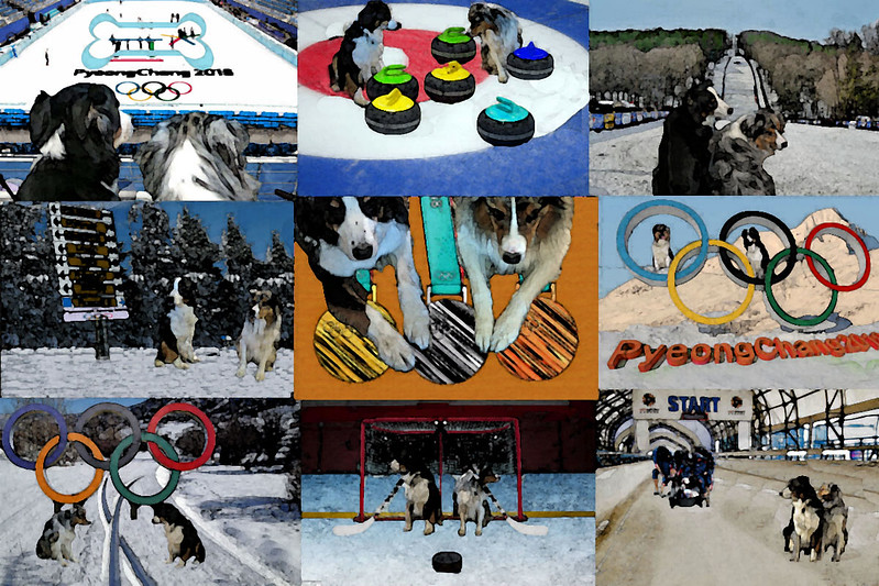 OlympicMosaic.GaWy_watercolor.jpg