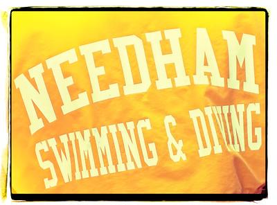 10/28/2015 - Needham Girls Varsity Diving => See Needham Athletic Director for password