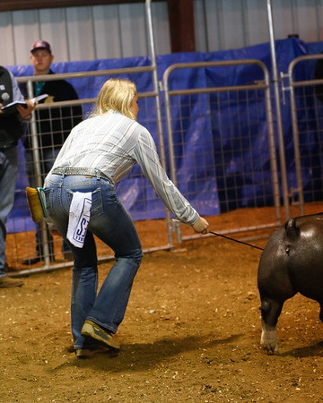 Malorie H Stock Show 2019