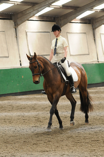 TRRC Dressage (08-May-16) - Class 5 (Prelim 12 - 2005)