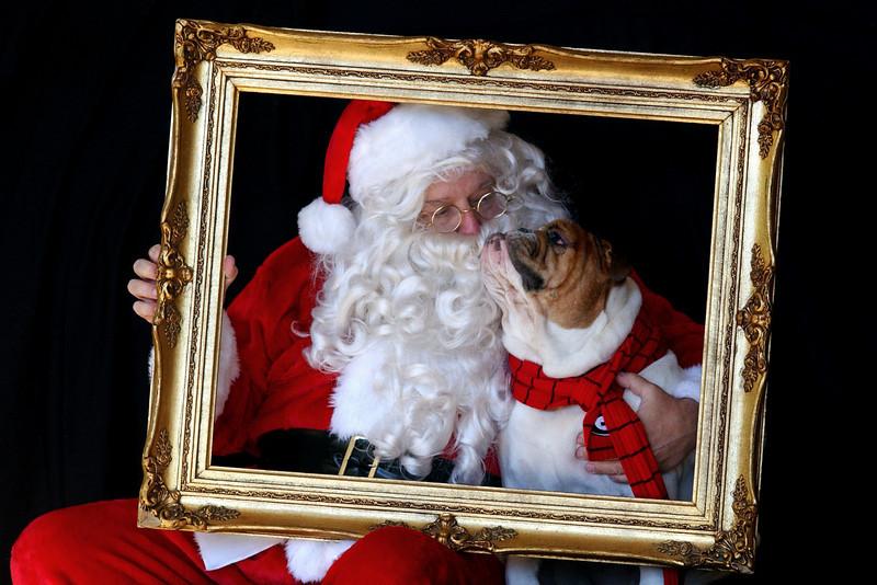 Doc Christmas 2010