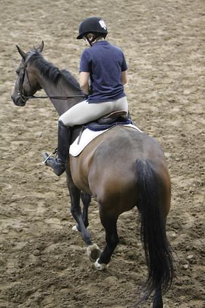 Culver Horses 2012-2013