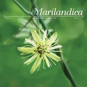 Marilandica Covers