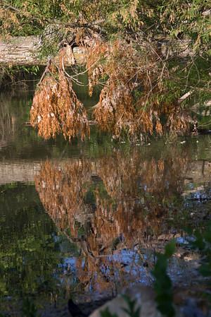 Cotton Wood Lake, Cottonwood Falls, KS