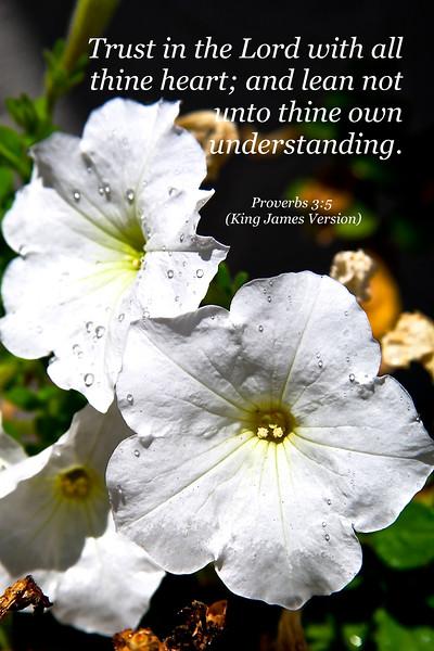 Proverbs 3-5 a .jpg