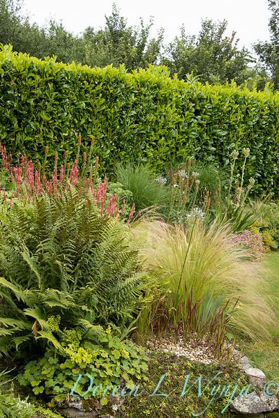 Beechleigh Garden - Jacky O'Leary garden designer_2960.jpg