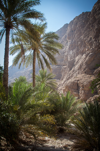 Wadi Shab and Tiwi