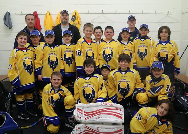 Boston Icemen Youth Tournament
