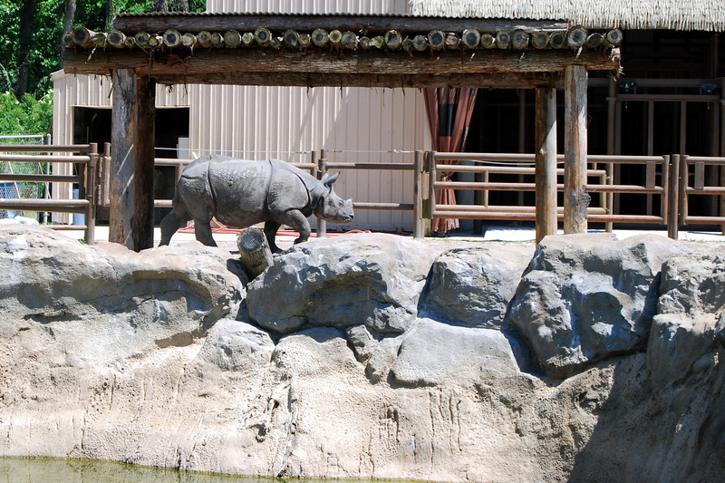 2014 Zoo in Sanford, Florida (10).JPG