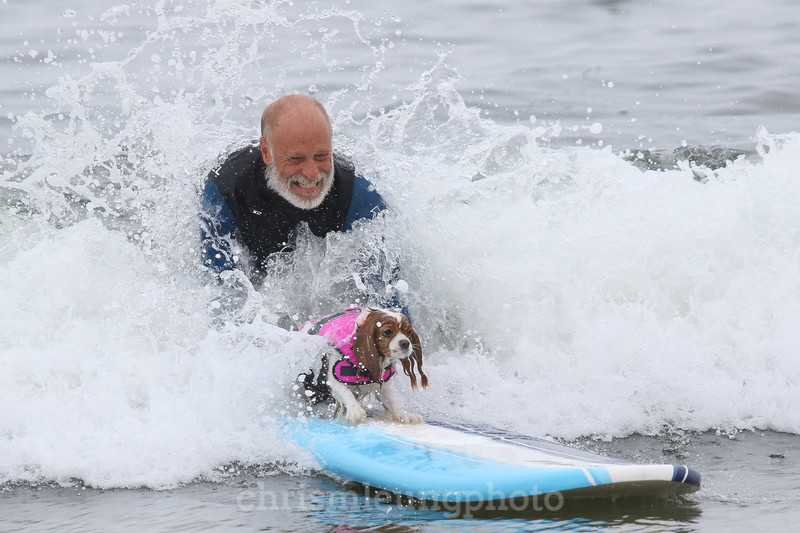 8/5/17: 2017 World Dog Surfing Championships at Pacifica State Beach in Pacifica, Ca by Chris M. Leung