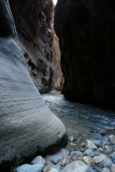 The Narrows. Zion NP