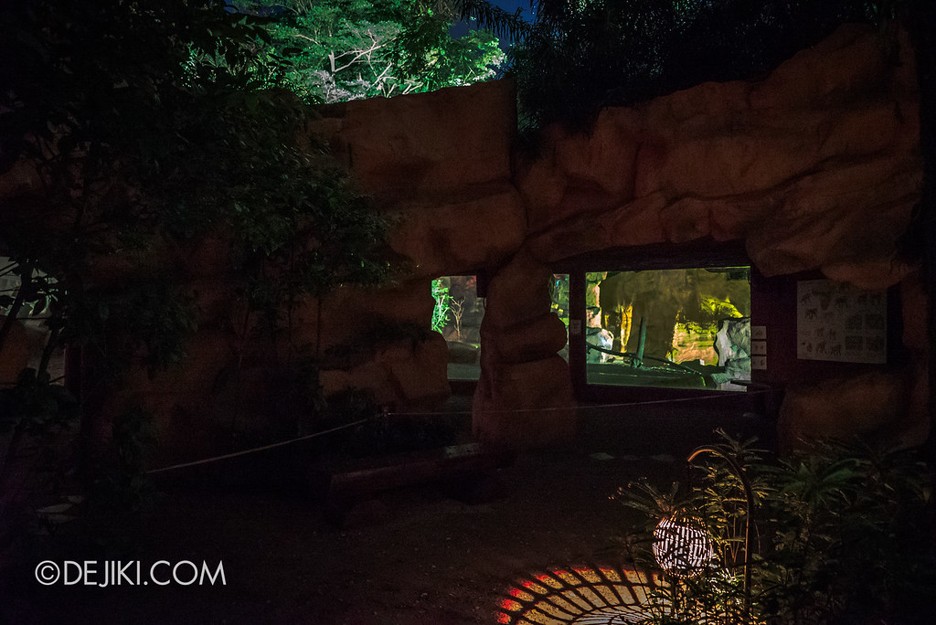 Singapore Zoo Rainforest Lumina - Call of the Wild empty viewing areas