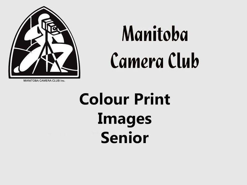 400a-Colour Print Senior.jpg