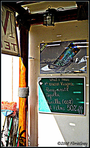 What's News?  Ever changing blackboard specials outside the Fat Whale, where we would breakfast each morning.  Not to be reproduced without the written permission of Florence T. Gray