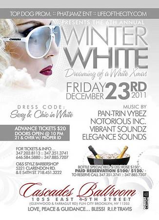 12/23/11 ( Winter White )