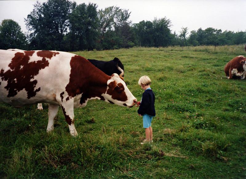 Farm_1999_07.jpg