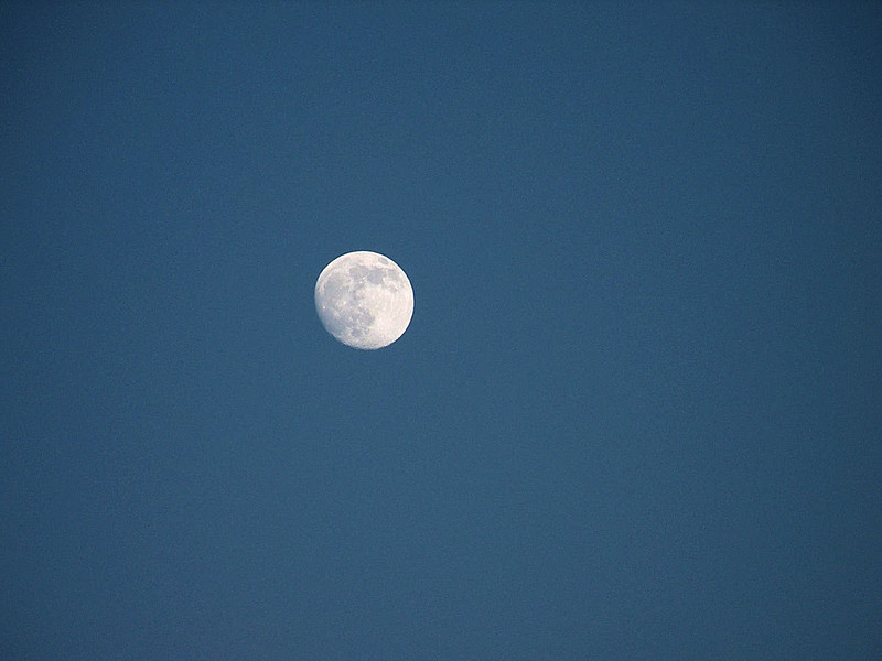 The great moon!!!!!!!!!!!!!!!