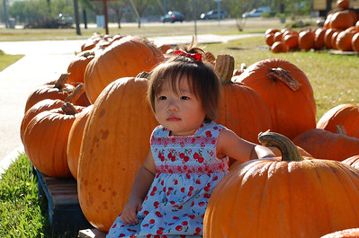 October 25, 2008 - Photo Shoot at the Pumpkin Patch