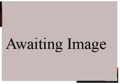 awaiting-image.png