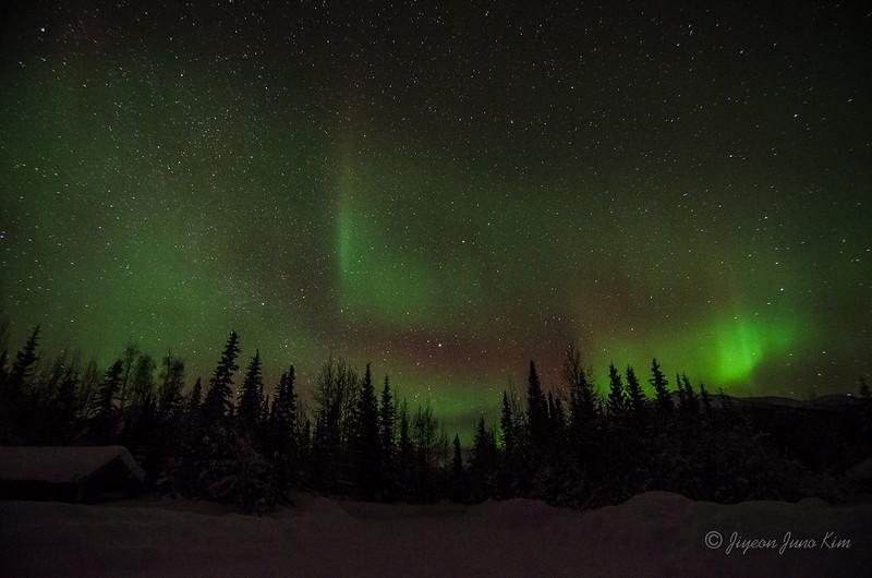 USA-Alaska-Wiseman-Aurora-2935.jpg