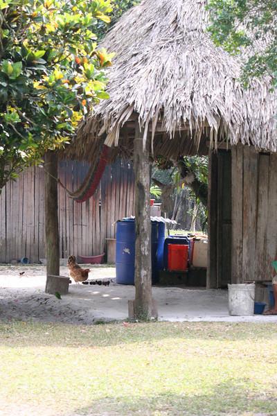 Guatemala Tikal 0 027.JPG