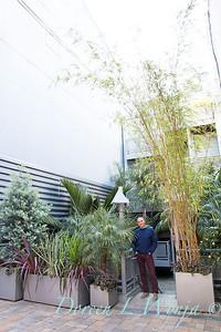 Debra's Vertical Garden - Davis Dalbok designer - Bay Area