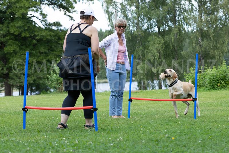 Finland July 2019-2084.jpg