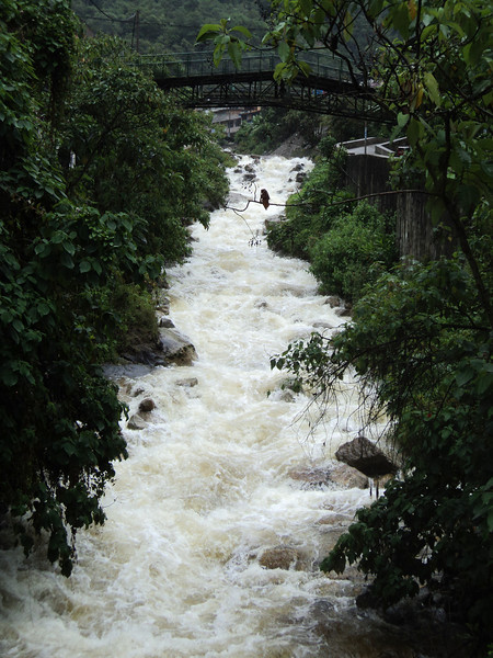 agua caliente bridge