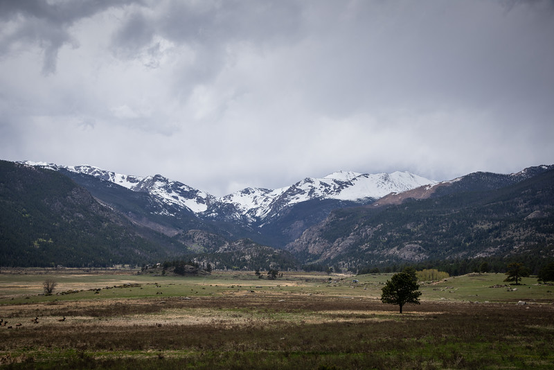 RockyMountain-54.jpg