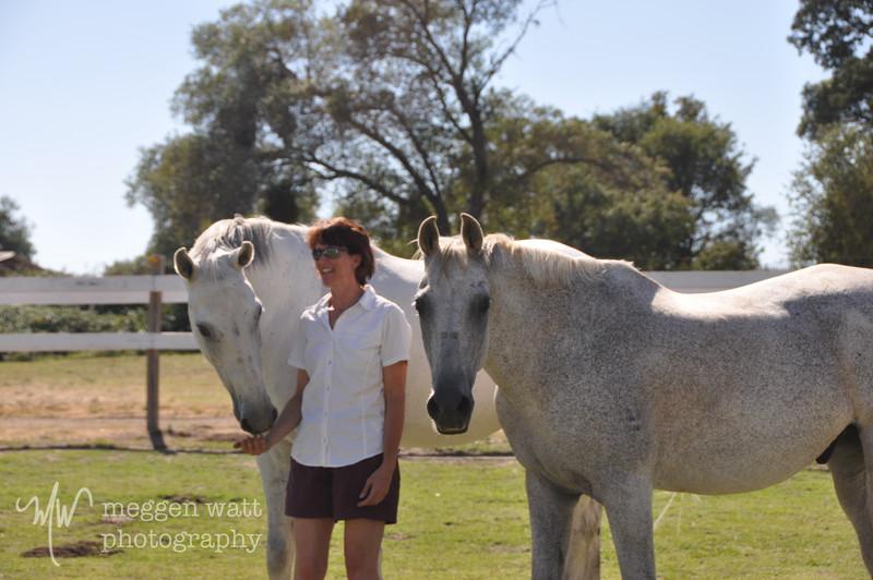 EB&Horses-152.jpg