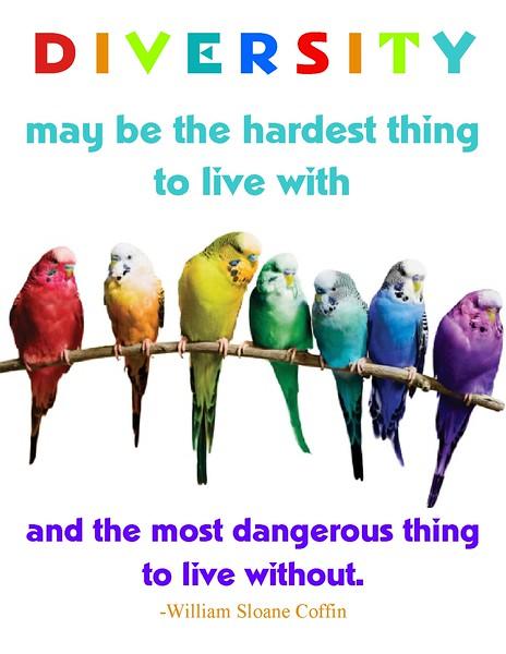 coffin diversity final birds.jpg.jpg