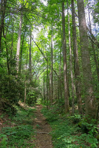 Riverside Trail -- 2,360'