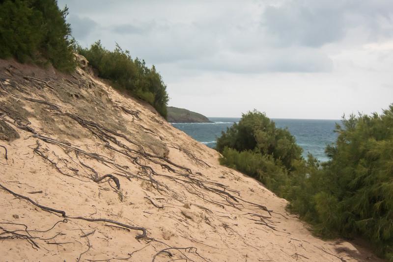 Trail traverses long dunes