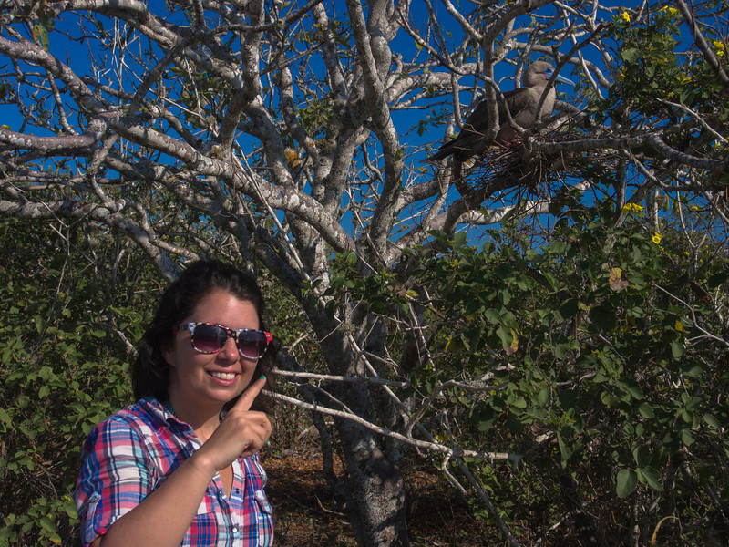 wild kingdom me and red footed booby.jpg