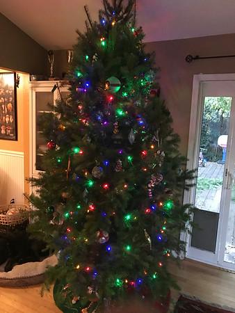2016-12-04 Christmas Tree!