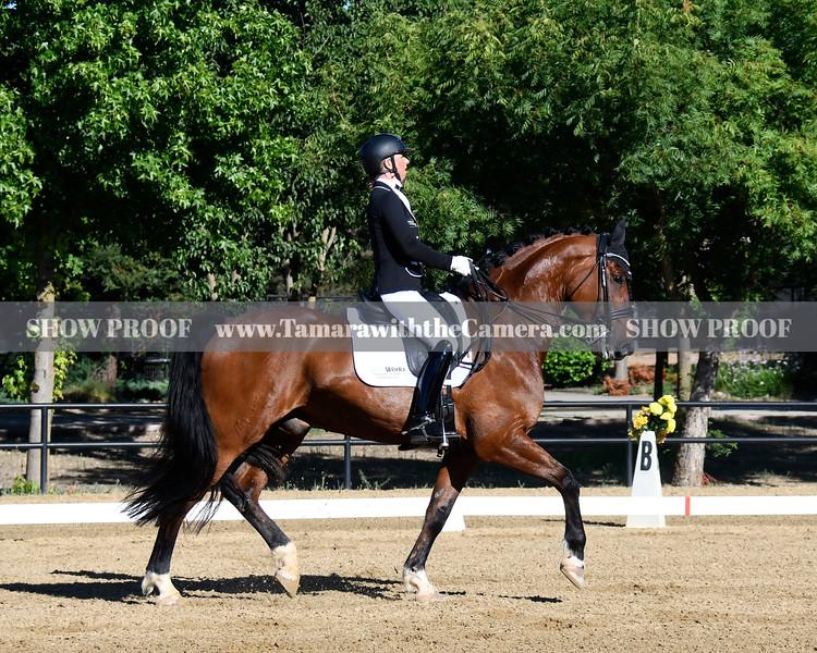 SVE 19 Hang On Oliver 4656.jpg