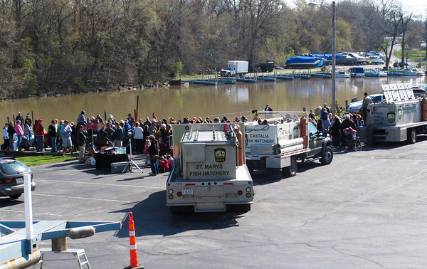 Vermilion welcomes 50,000 new Steelheads from ODNR on April 26, 2013