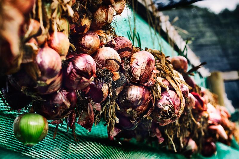 Farmhouse Onions